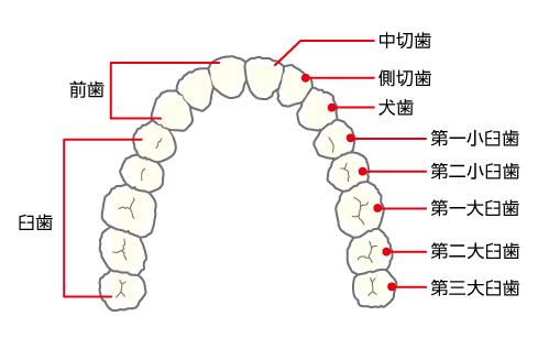 0_14_歯牙の障害